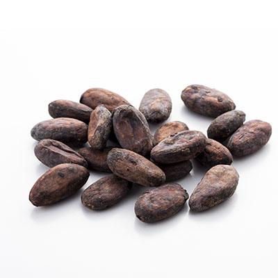 Fève de cacao cru bio 1Kg