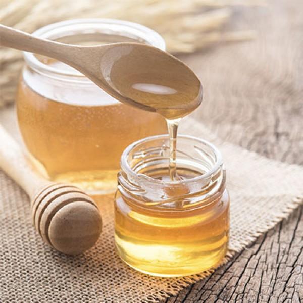 Miel de trèfle (non pasteurisé) 1L