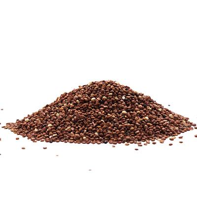 Quinoa rouge bio 1Kg
