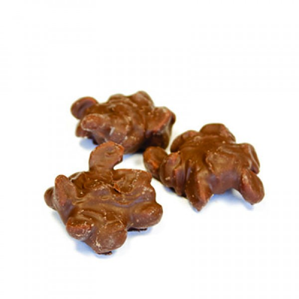 Chocolat Clusters 100g